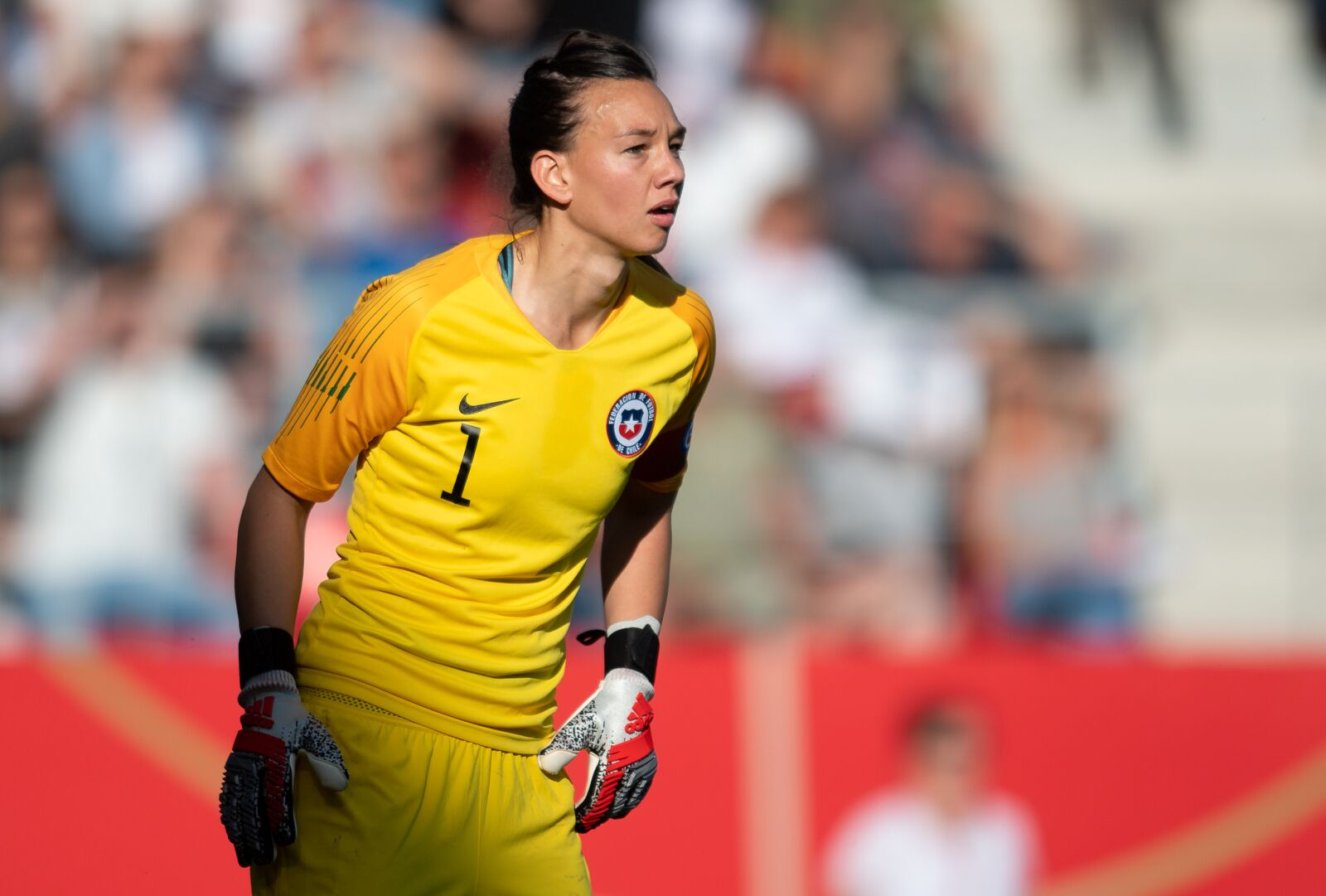 ff73a498880 Christiane Endler made the most insane save in Chile's first game (Video)