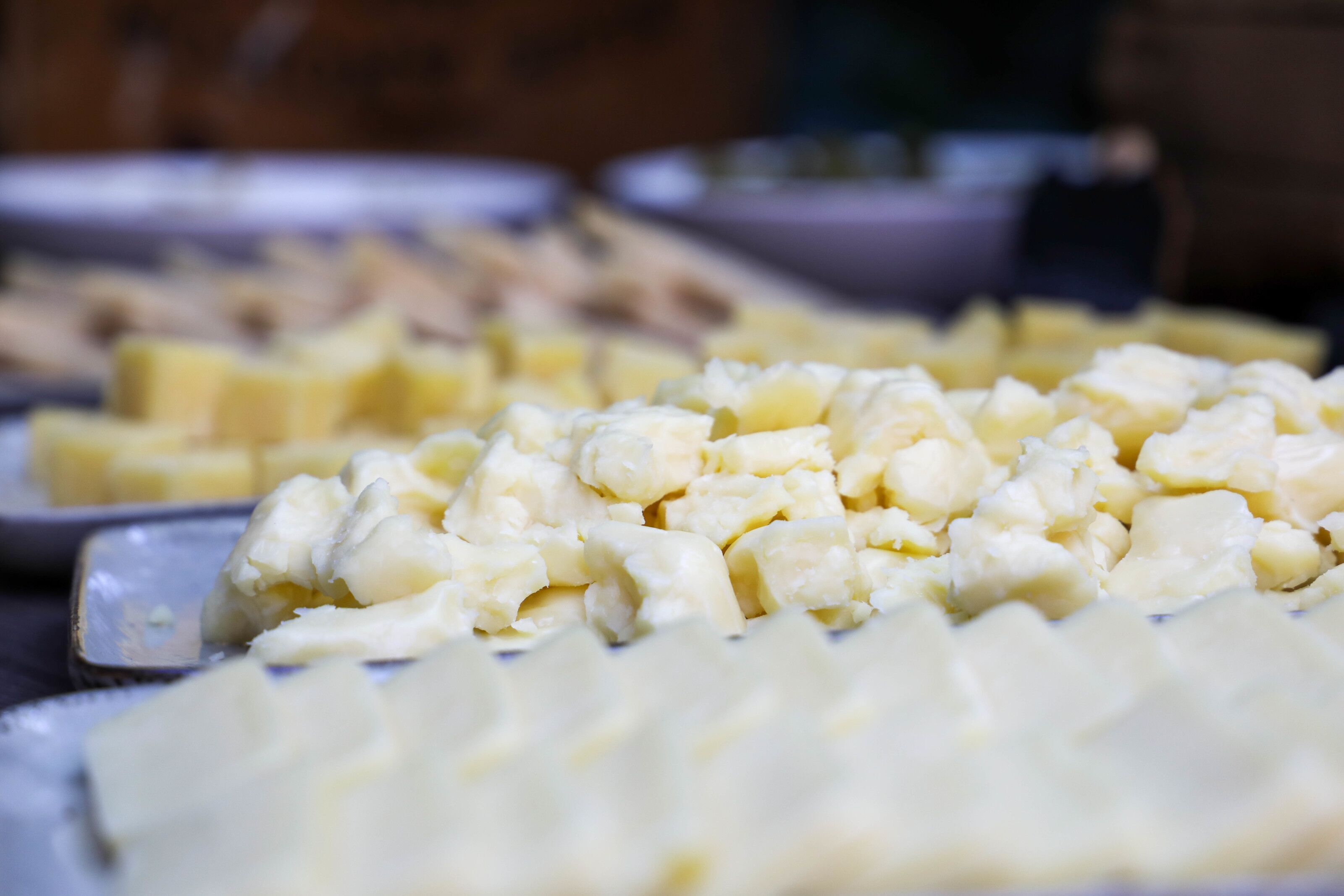 California Cheese Trail: A tasty journey through artisan cheese