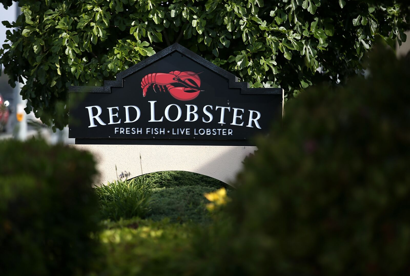 Red Lobster Endless Shrimp offers new and secret menu items