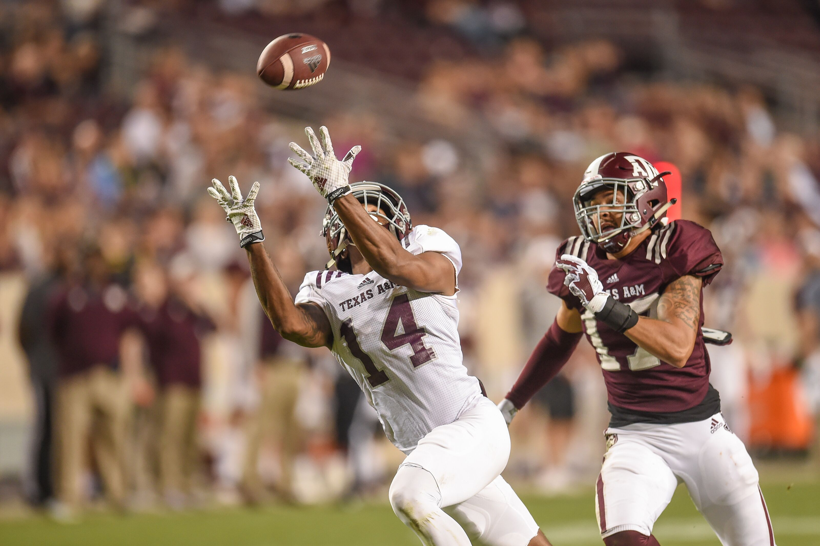 Texas A&M football: Camron Buckley key to replacing Jace Sternberger