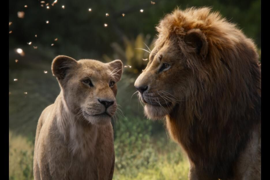 Where can you stream The Lion King (2019)?