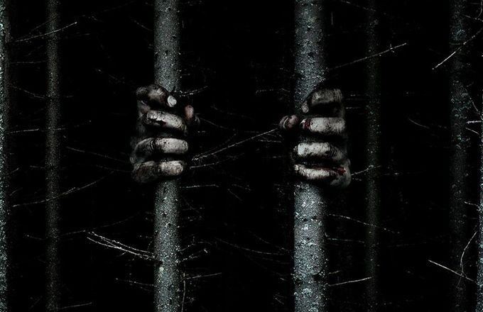 blair witch project trailer In the new the blair witch project 3 official trailer 2016, the kids are all alone in the forest against the witch who takes them all out one by one.