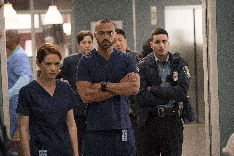 Greys Anatomy Fans Push For Boycott Against Season 14 Departures