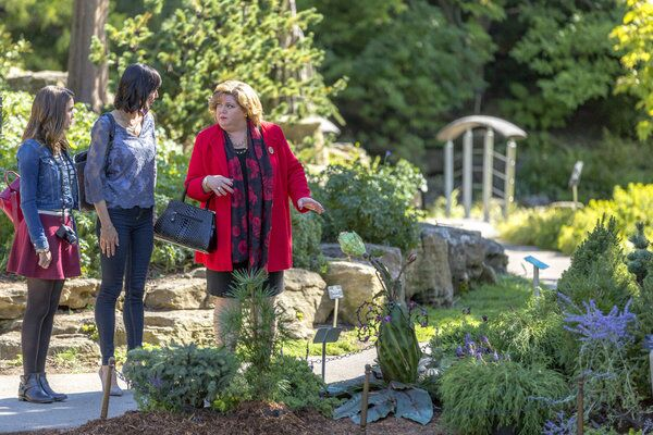 Good Witch' Season 3, Episode 1 Preview: 'A Budding Romance'
