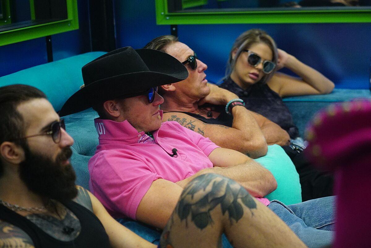 How To Watch Big Brother Season 19, Episode 10 Online-9705