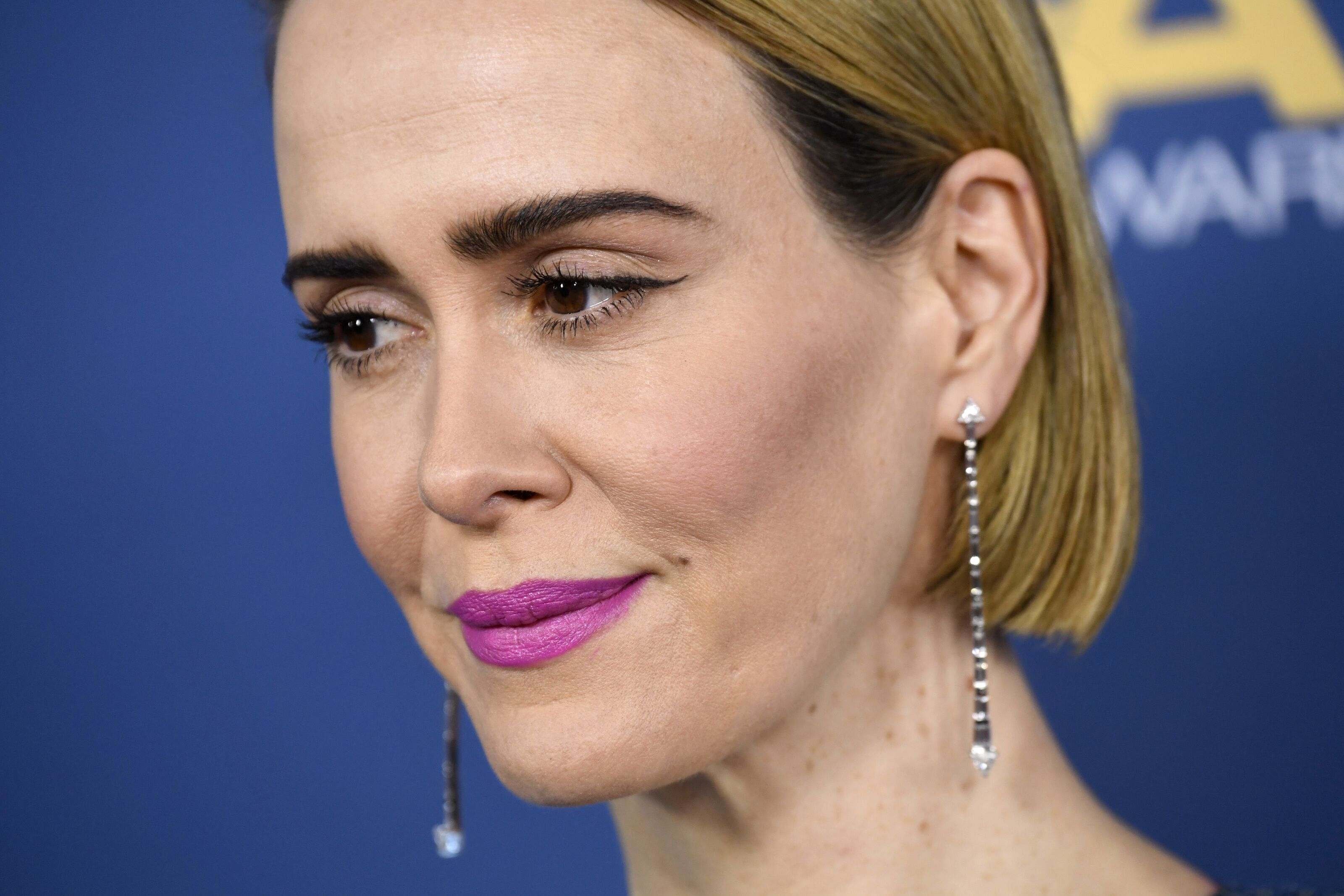 What is Sarah Paulson's mystery role in American Horror Story: 1984?