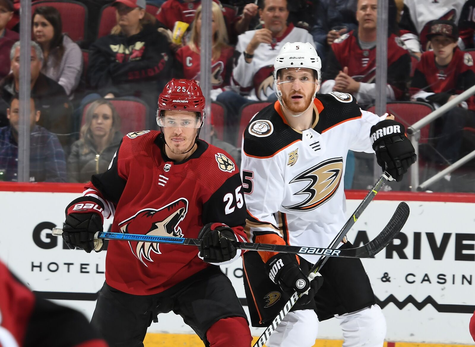 Arizona Coyotes and the NHLPA Player Poll results