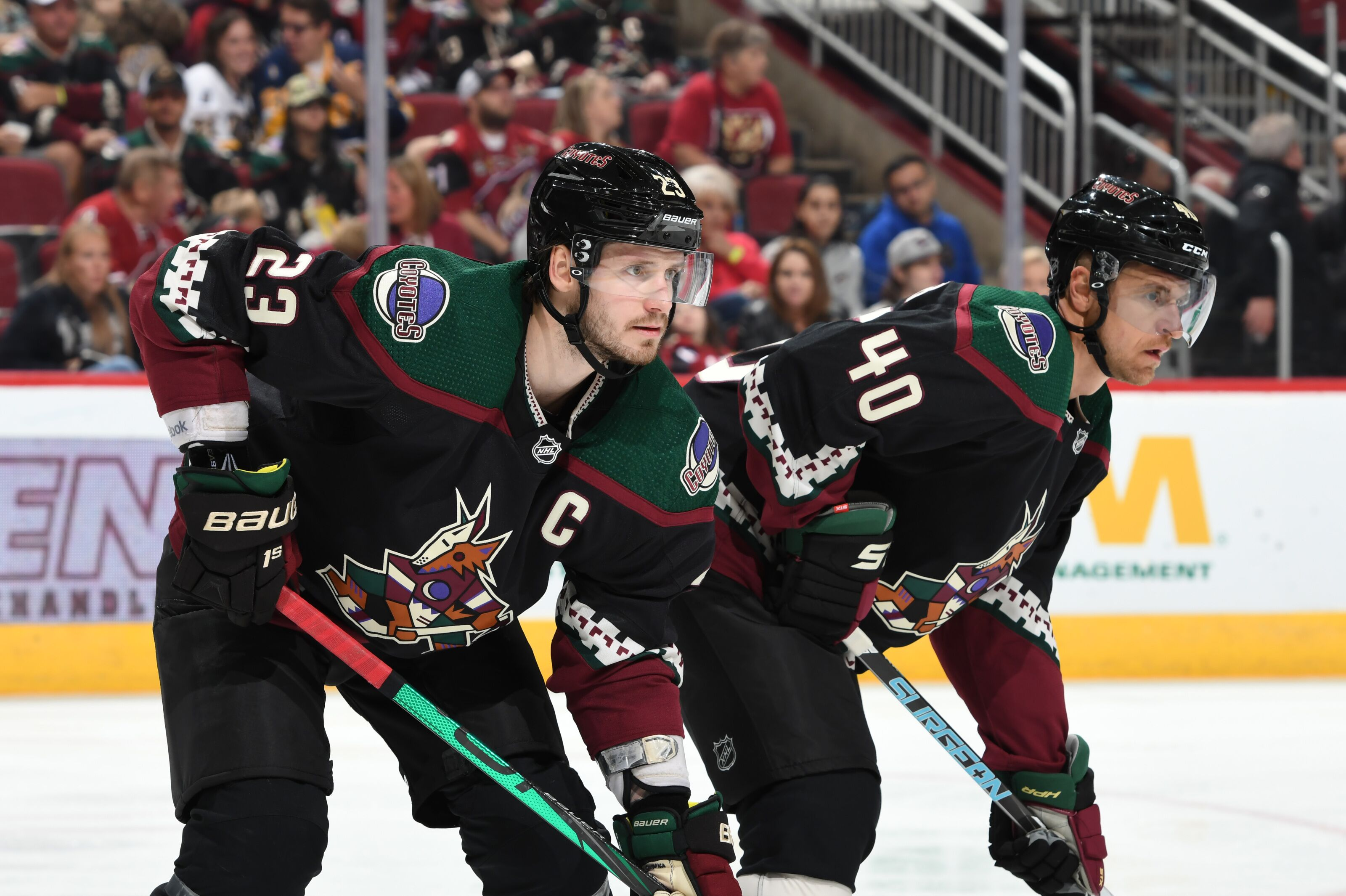 Arizona Coyotes Morning Howl Report for October 21st 2019