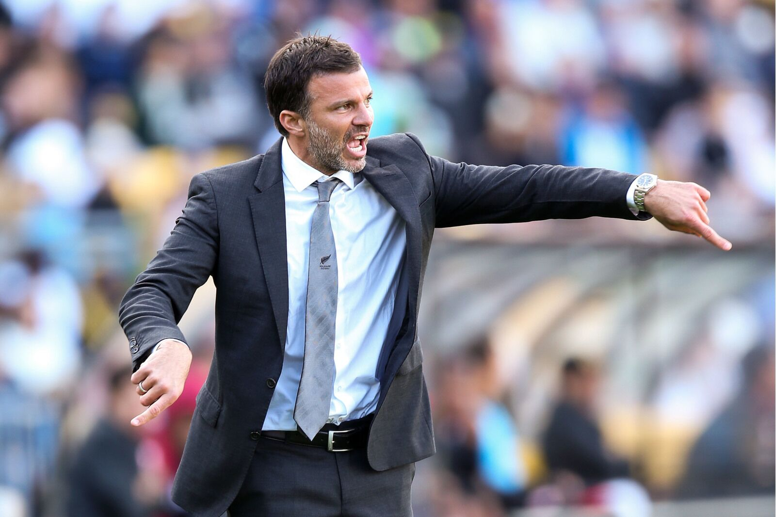 Newcastle United potential Rafa replacement: Anthony Hudson