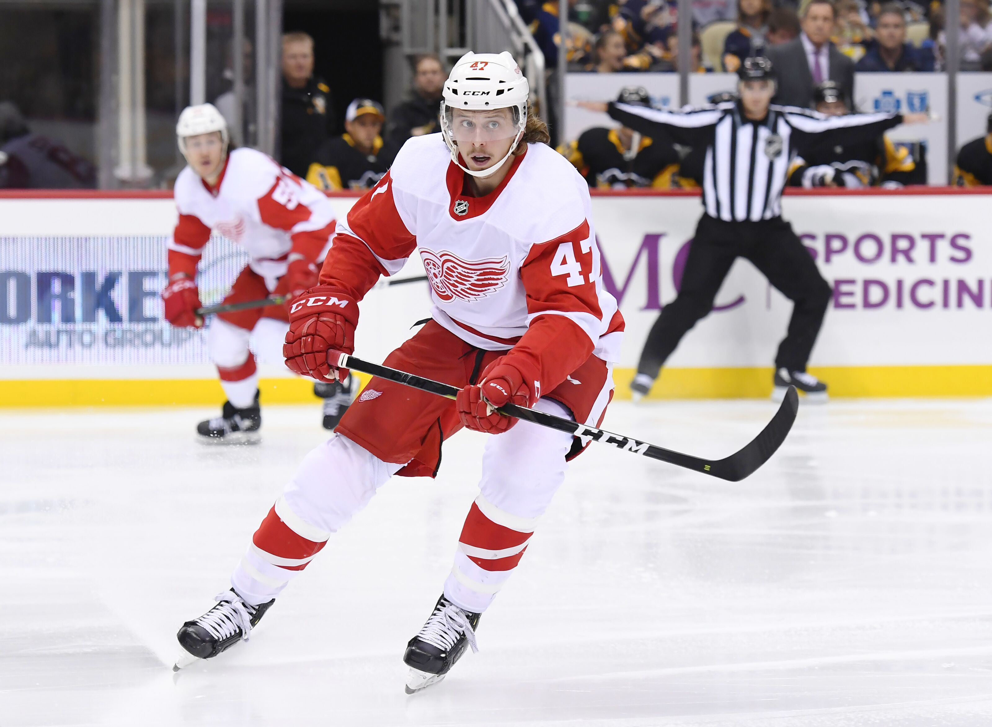 d4be99850 The Detroit Red Wings  The Rebuild Hinges on Youth