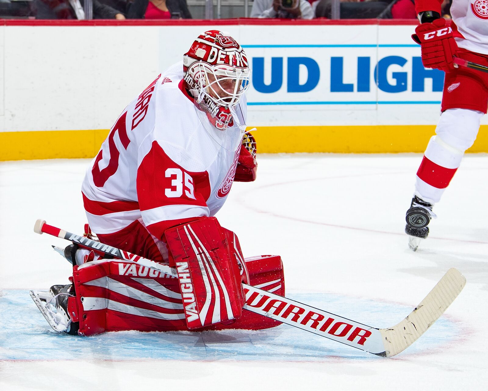 Detroit Red Wings: Jimmy Howard Eyeing Contract Extension