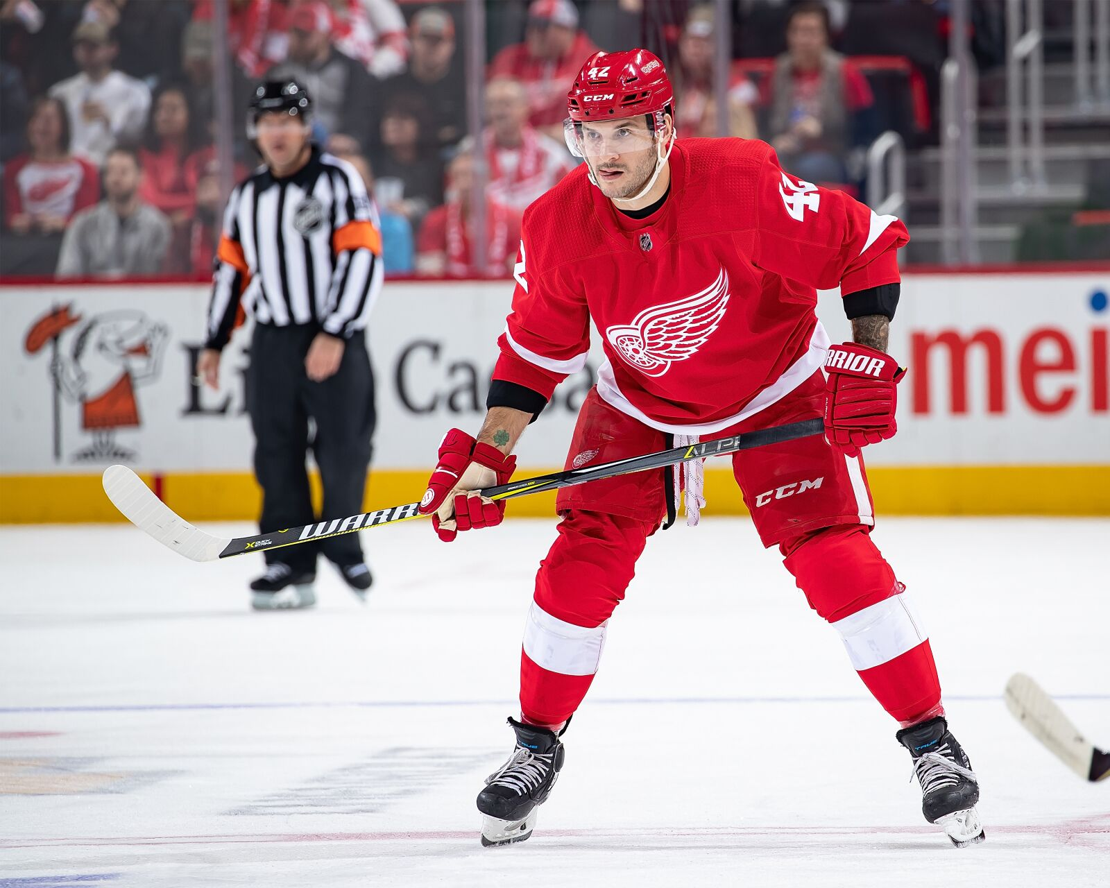 Detroit Red Wings  Martin Frk Working Hard To Become a Regular fba9e105b