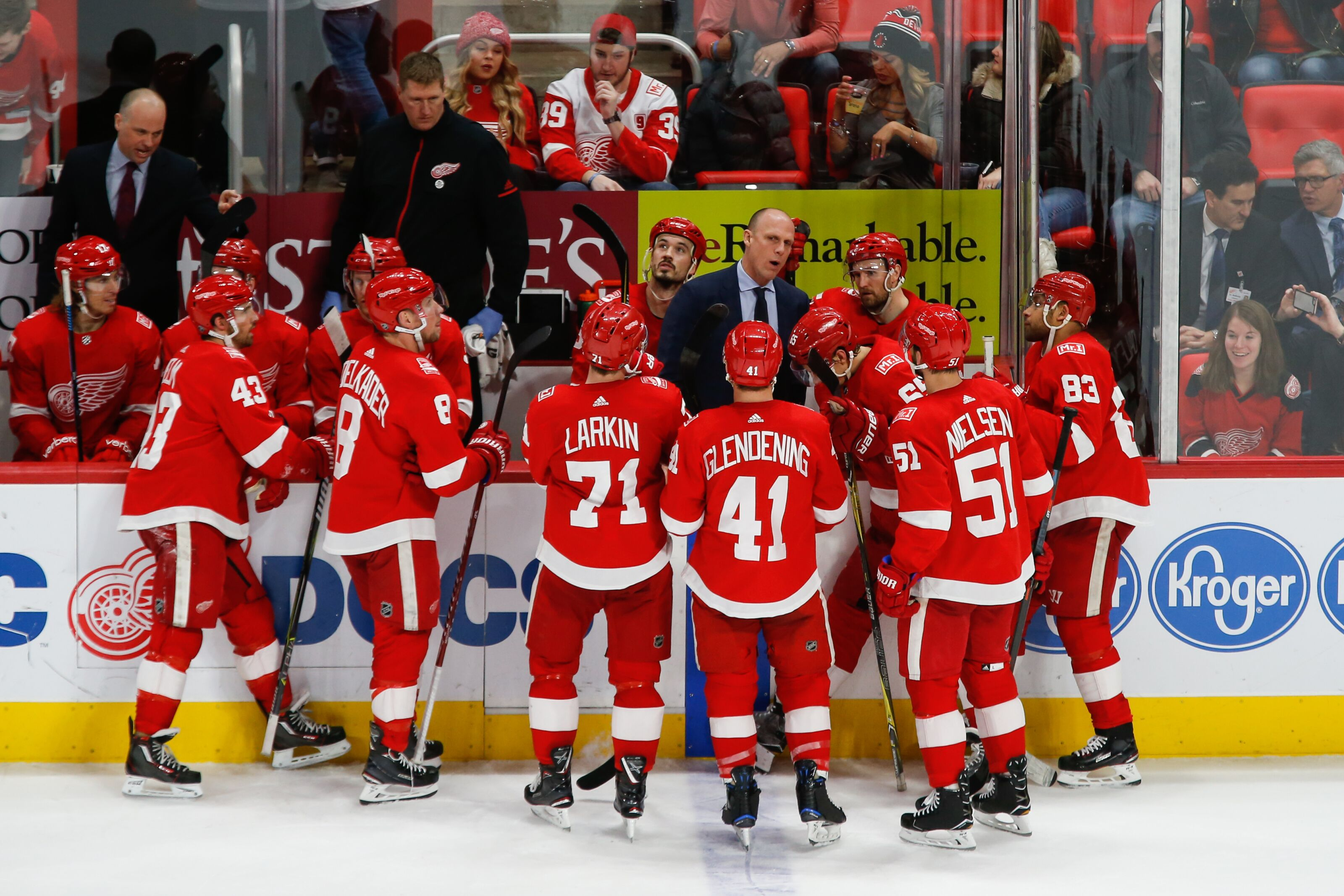 6729893e233 Detroit Red Wings: The Forwards & Wishful Line Combinations