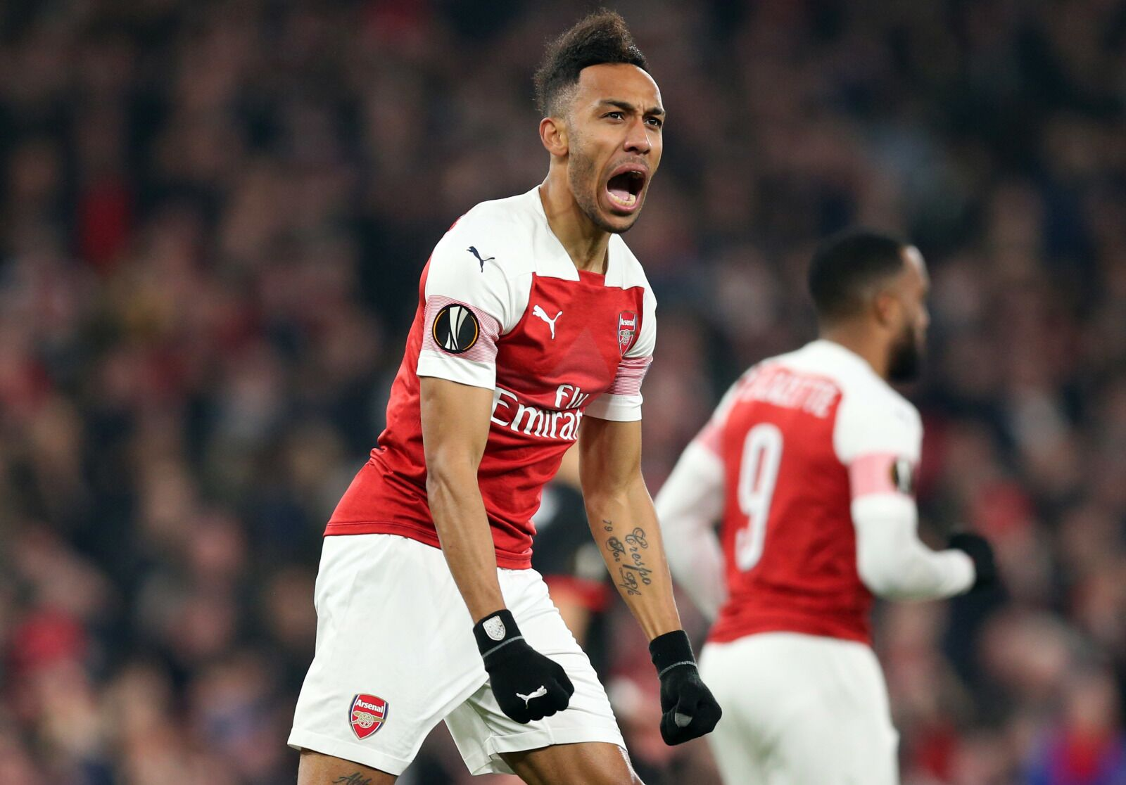 Arsenal: Manchester United can go bark up another tree