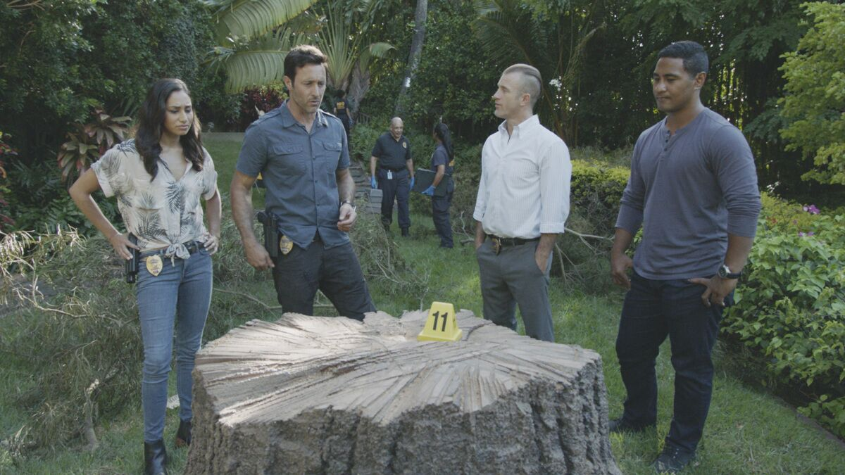 Hawaii Five-0 Season 10 Episode 9 synopsis: A Thanksgiving case