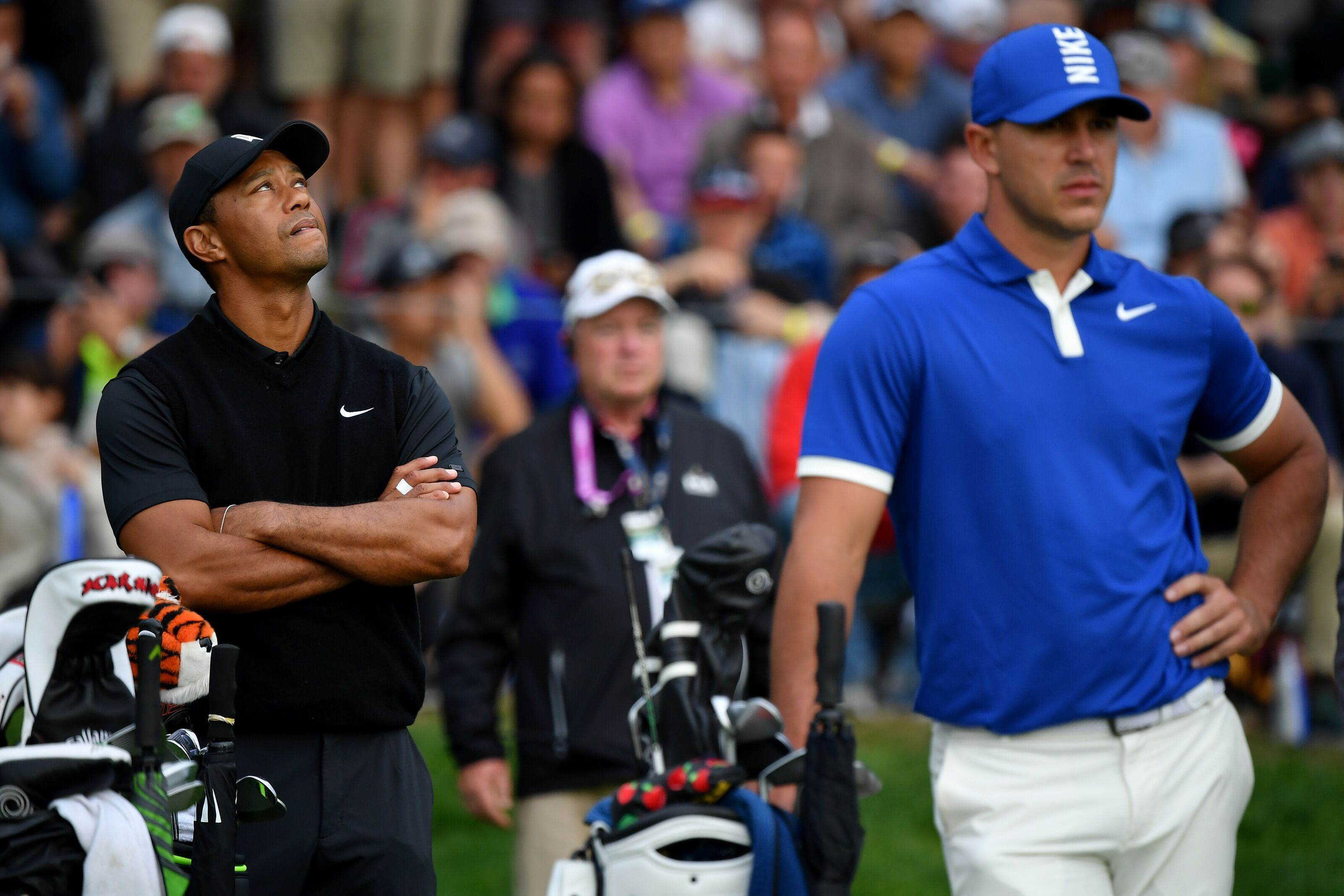 Presidents Cup: Who Tiger Woods should pick to replace Brooks Koepka - Pro Golf Now