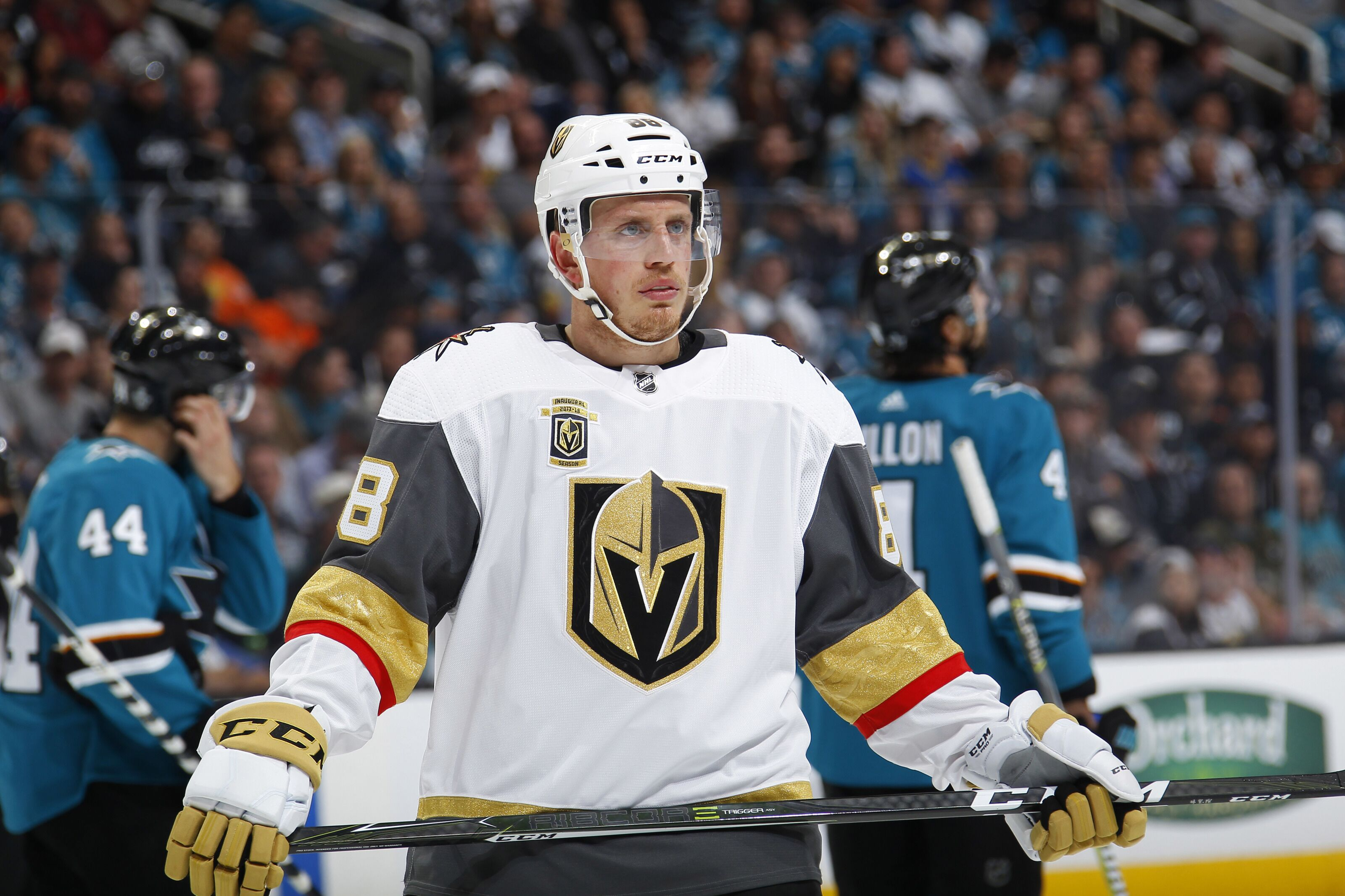 0dbd1357970 Vegas Golden Knights  Nate Schmidt suspended 20 games