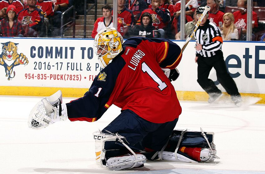 The Florida Panthers Don T Want Roberto Luongo Back