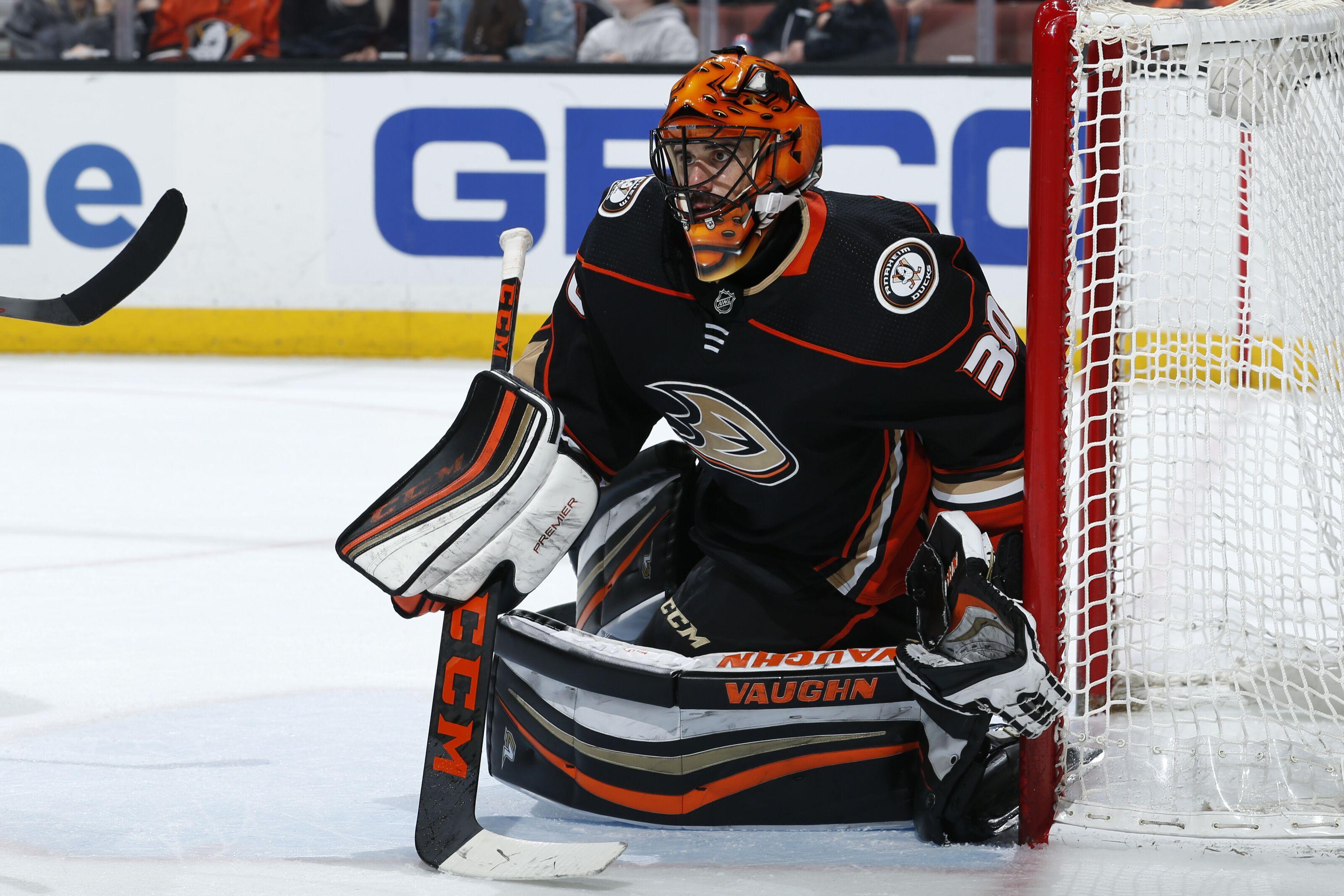 Anaheim Ducks Hockey 201 The Goalie S Butterfly Technique