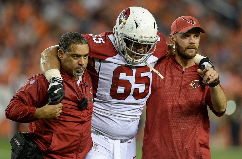 6c357b22 Former Arizona Cardinals' player taking a moral stand