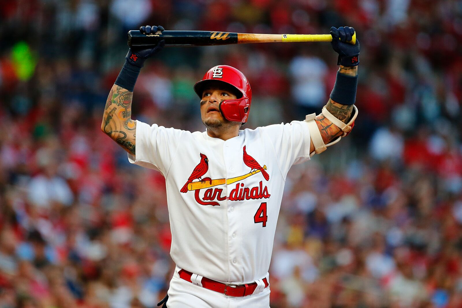 For the St  Louis Cardinals, is this as good as it gets?