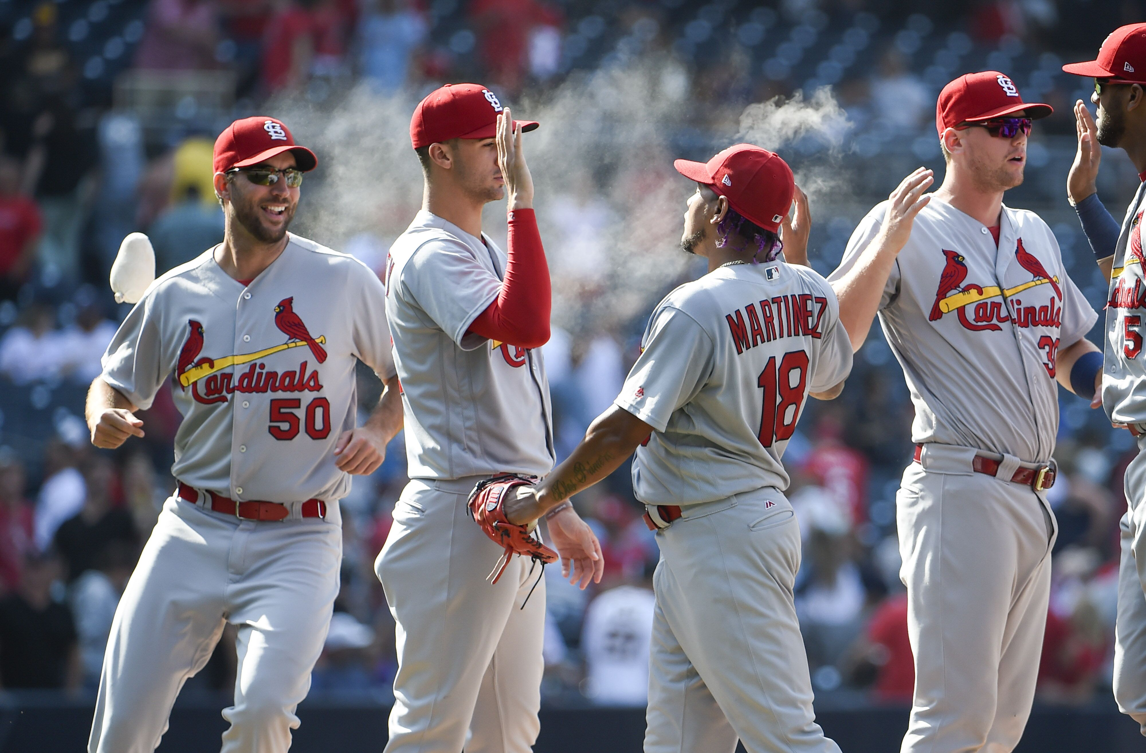 Image result for st louis cardinals