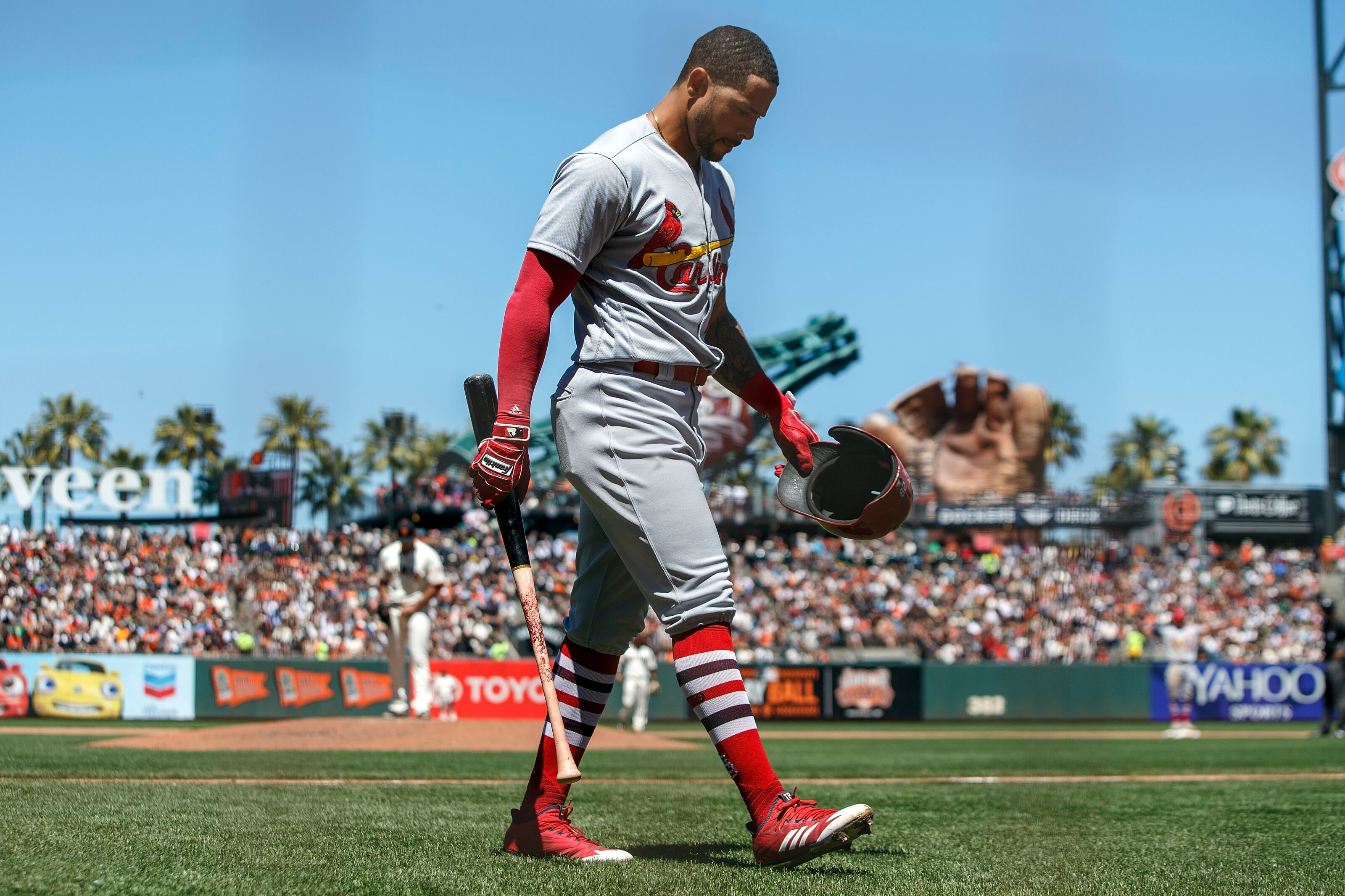 St. Louis Cardinals: Checking up on Tommy Pham
