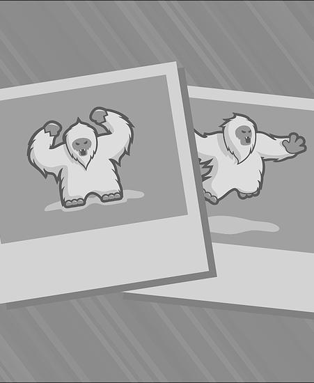 Game 45 Recap: Blazers 106, Mavericks 104