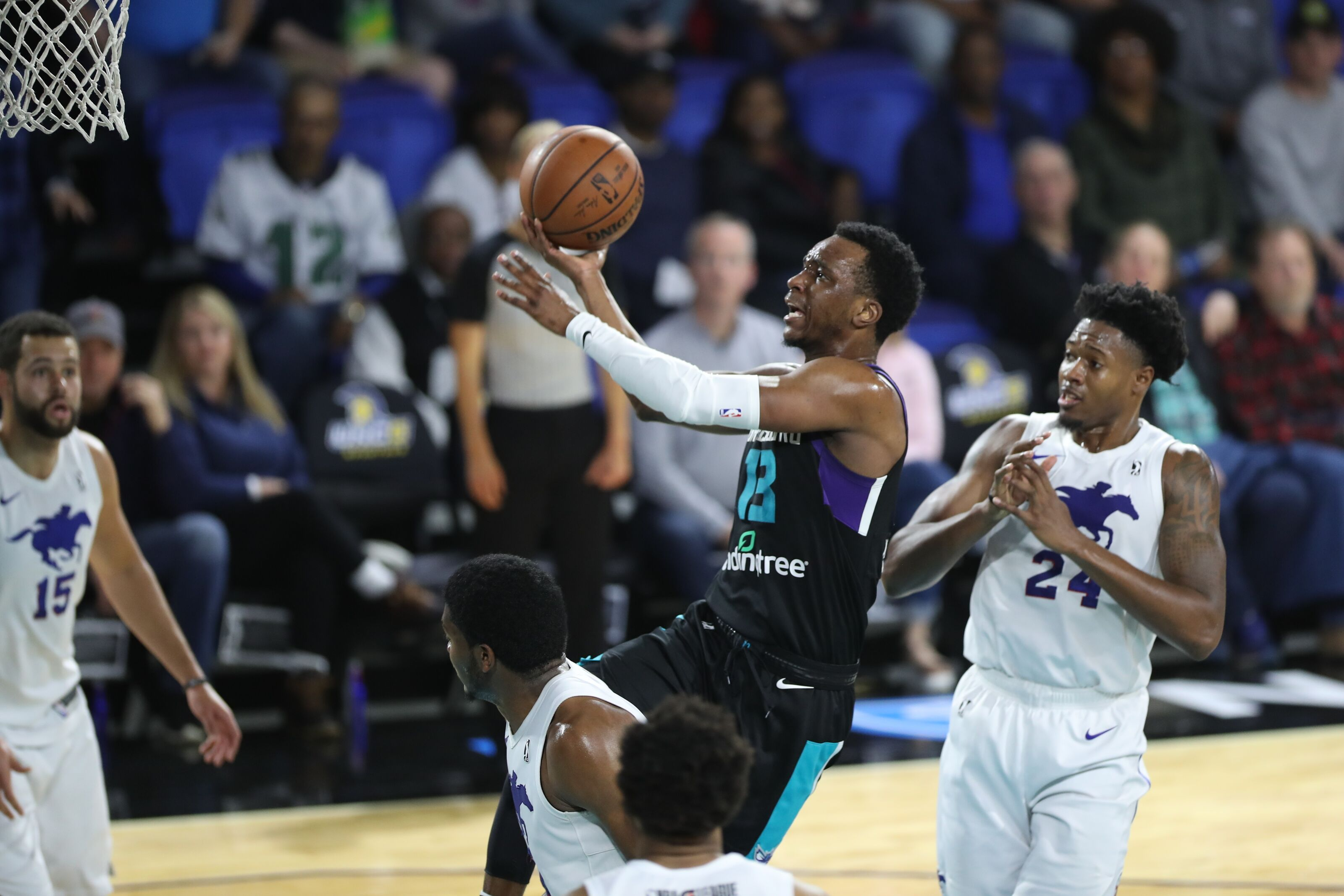 42690a830 Charlotte Hornets G-League Chealey transferred to Hornets