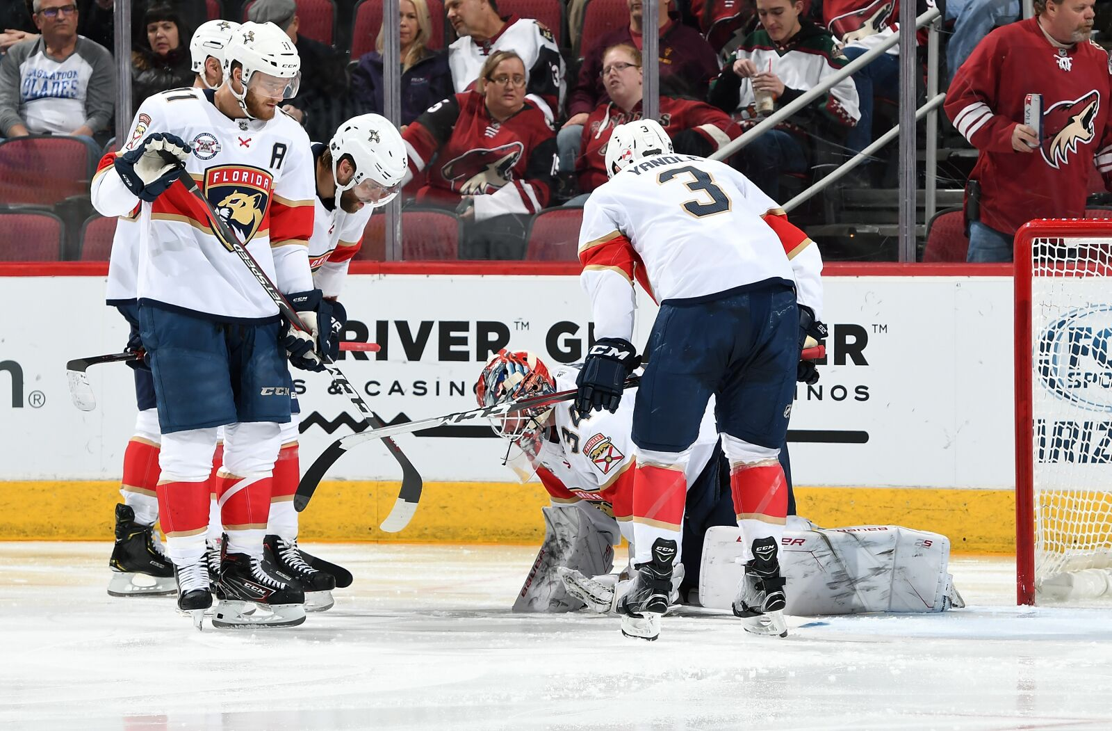 Florida Panthers are Stuck at the Top of Mediocrity dda231850