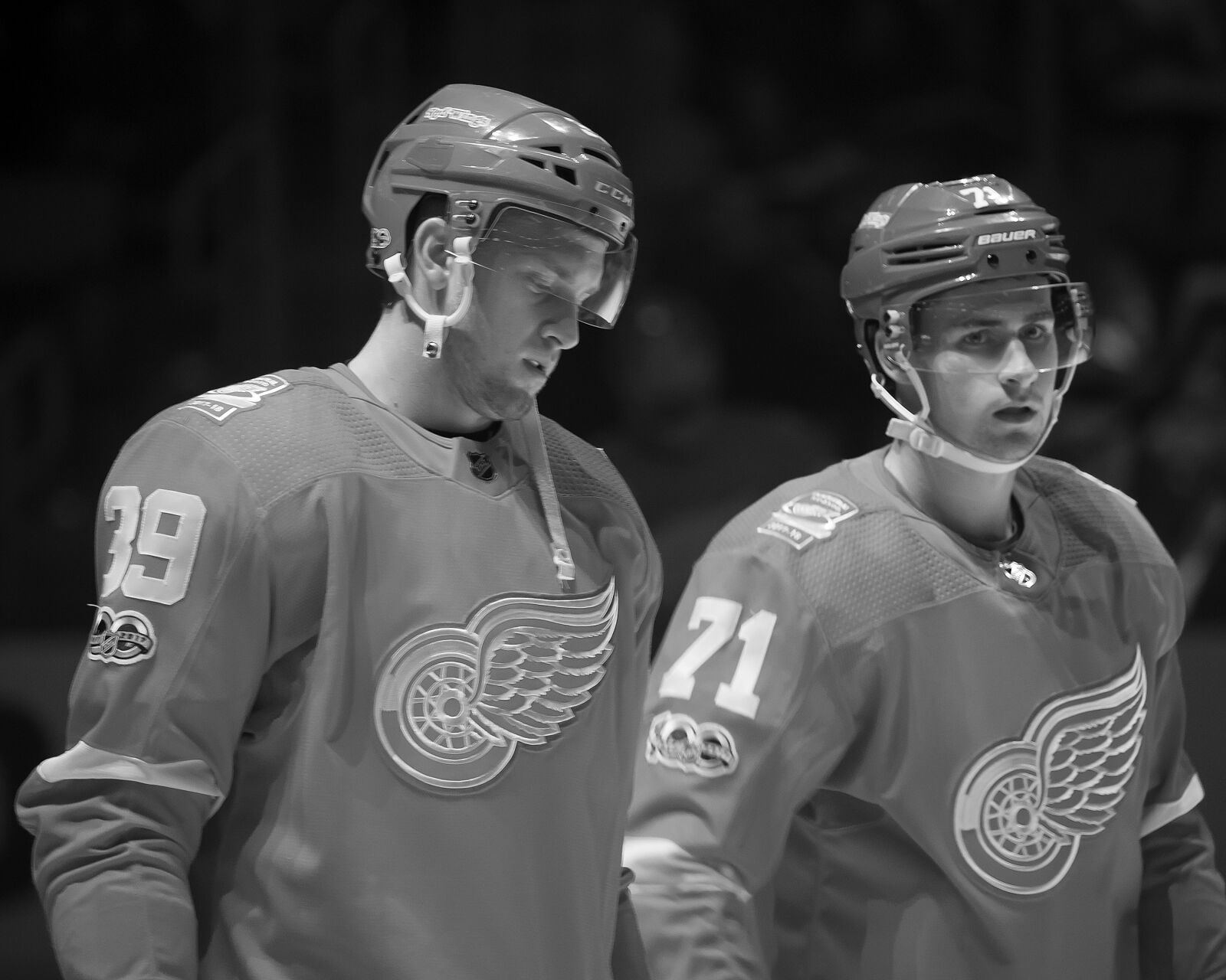 30f9e5c026c Florida Panthers Should Look Into the Detroit Red Wings  Restricted Free  Agents