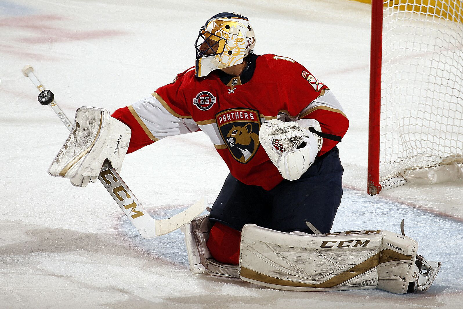 Florida Panthers Three Standouts In Bjugstad Mccann Homecoming Page 3