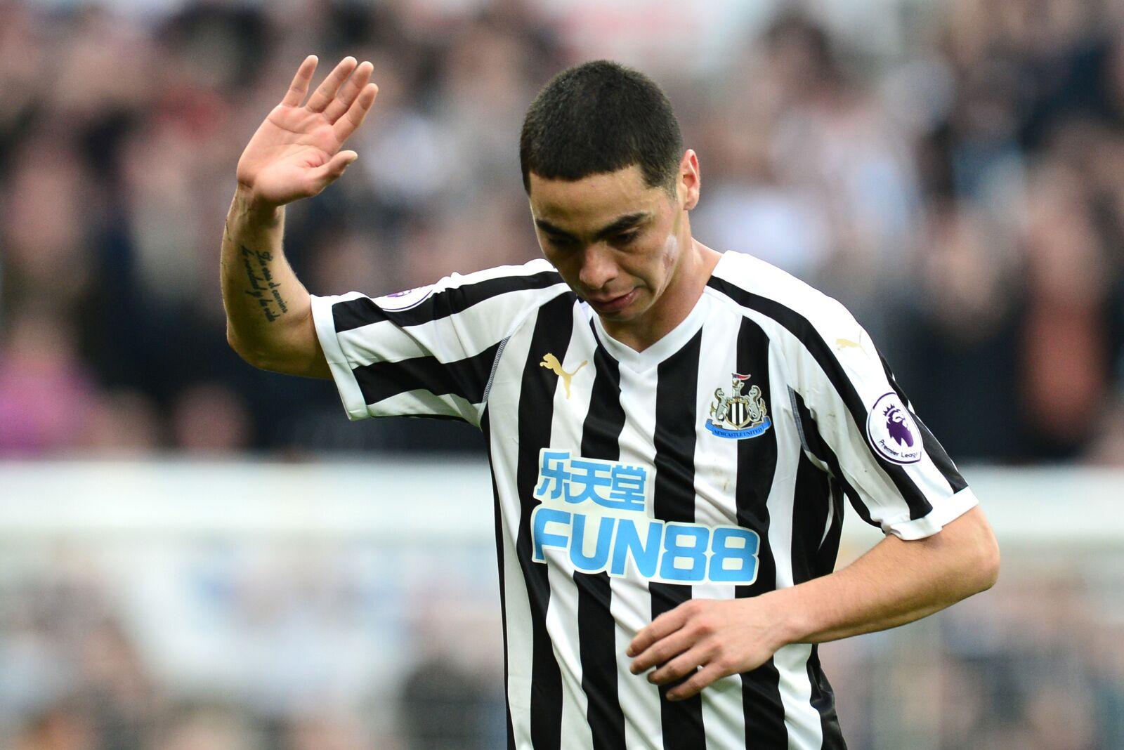 Newcastle: Miguel Almiron Proved To Be Worth Every Penny