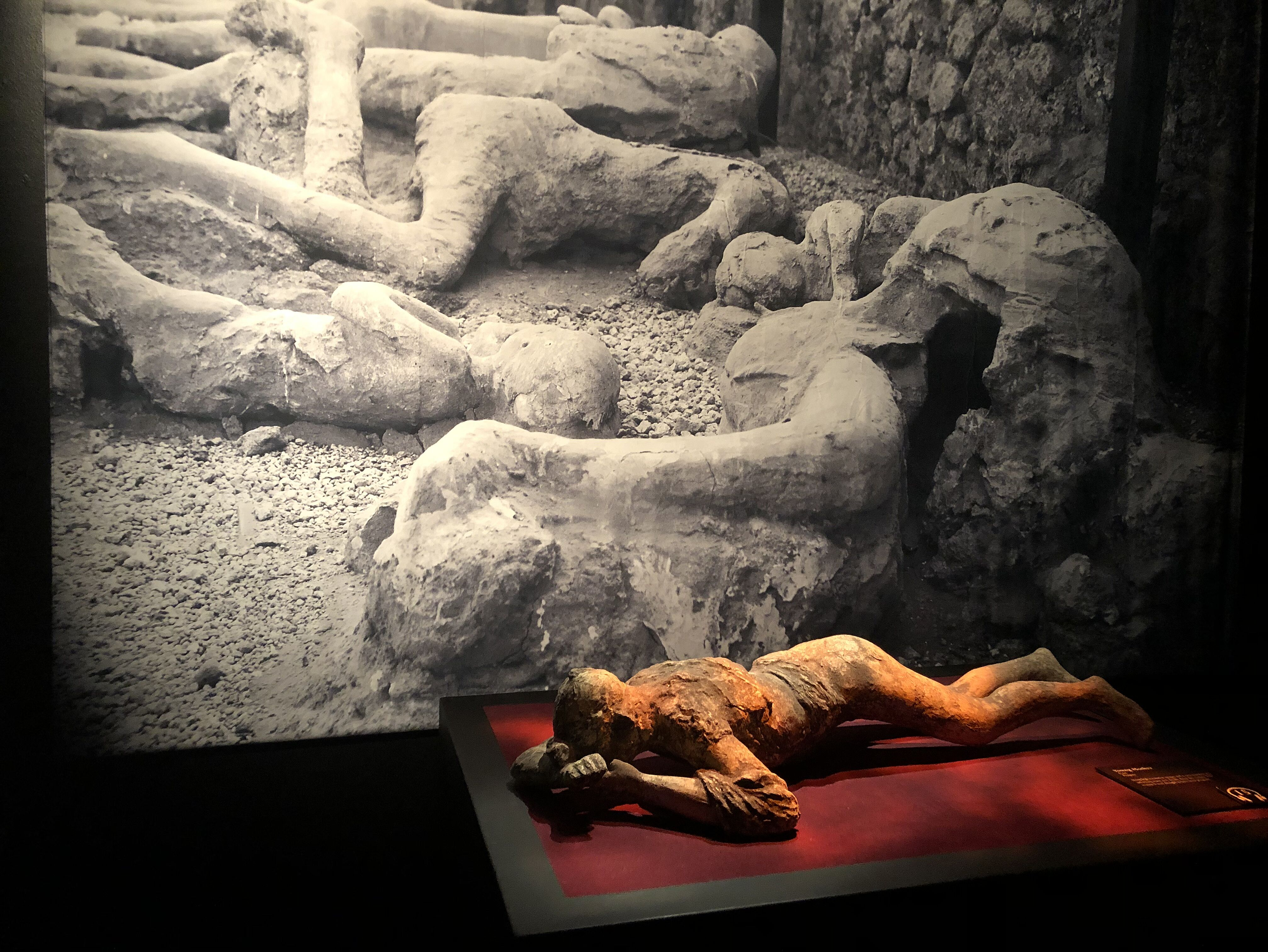 """""""Pompeii: The Exhibition"""" takes us inside the real-life ..."""