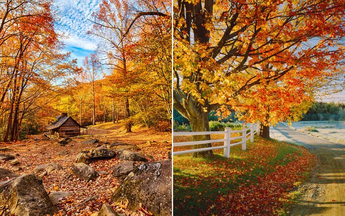 The Only Map You Need To Plan A Perfect Fall Foliage Trip Travel - Fall foliage map us 2016
