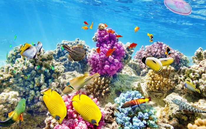 Belizes reef system is in imminent danger travel leisure belize barrier reef system being mined sciox Image collections
