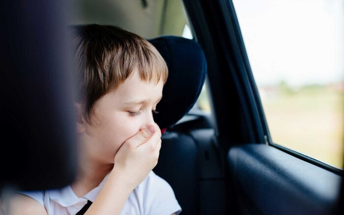 How To Get Rid Of Sick Smell In Car
