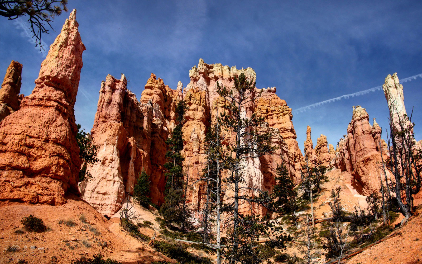 queens garden bryce canyon