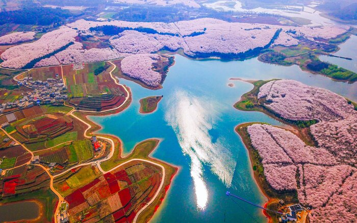 Chinas spring flowers look magical in these photos travel leisure pinghua farm china mightylinksfo Gallery