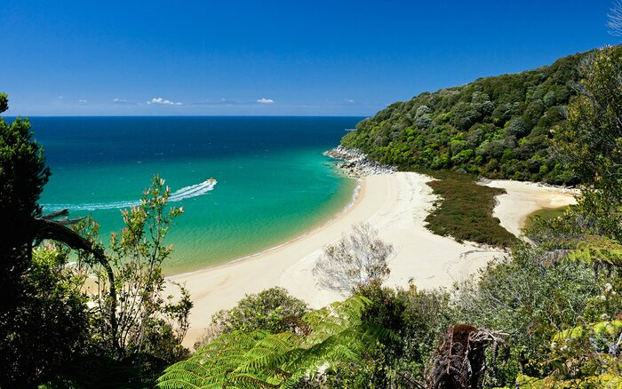 Abel Tasman Beach New Zealand Nz