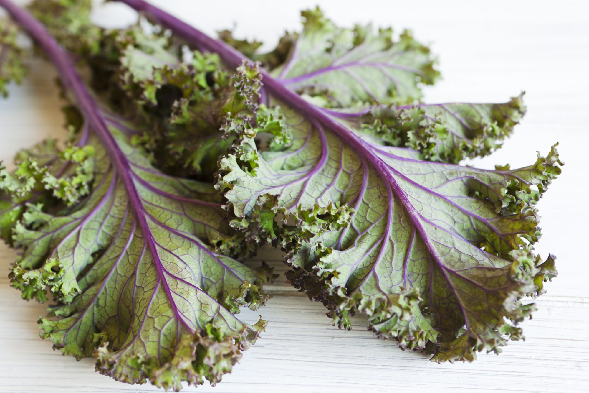 miracle-mineral-leafy-greens