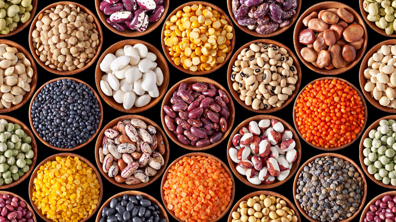 dry pulses beans legumes chickpeas and lentils