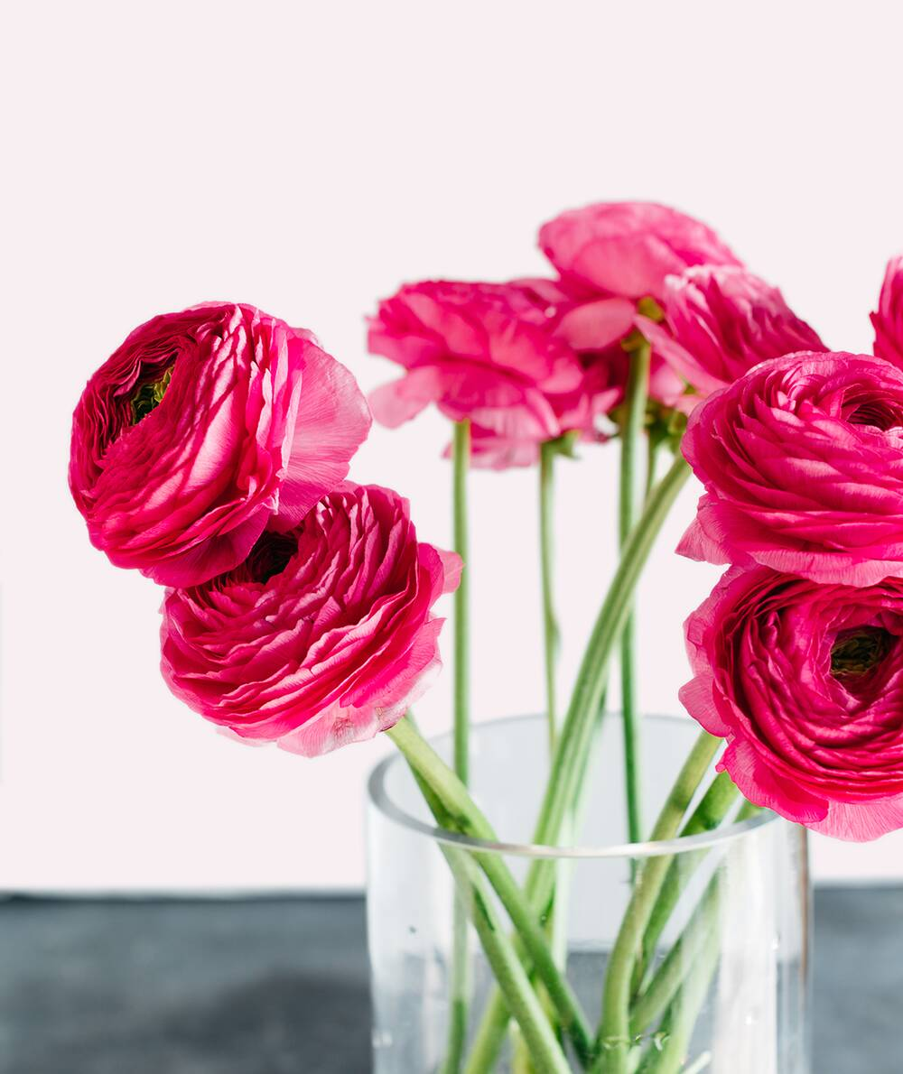 How To Make Your Valentines Day Bouquet Last Longer Real Simple