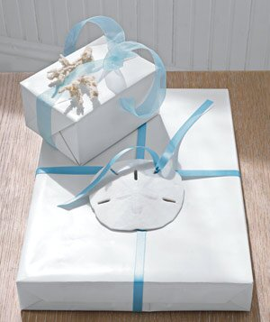 The best wedding gift i received real simple gift box with sand dollar and blue ribbon negle Choice Image