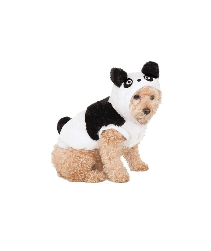 21 silly halloween costumes for pets real simple 16 silly halloween costumes for pets panda pup panda pup solutioingenieria Choice Image