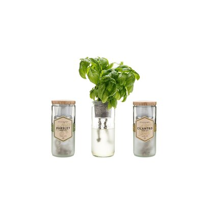 Indoor Herb Garden Kit Review Basil