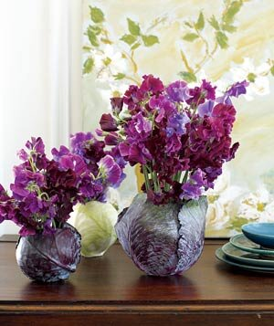 Sweet peas in cabbage flower arrangement