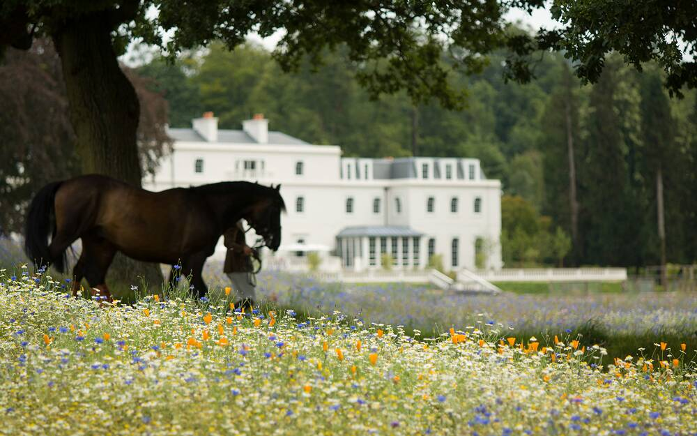 English Country-House Hotels | Travel + Leisure