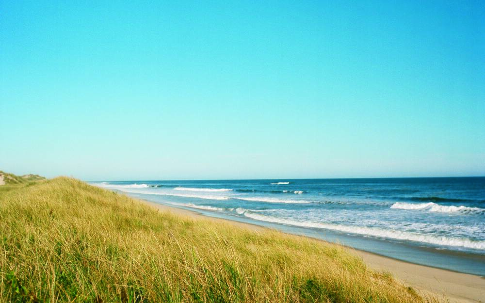 Insider S Guide To The Hamptons