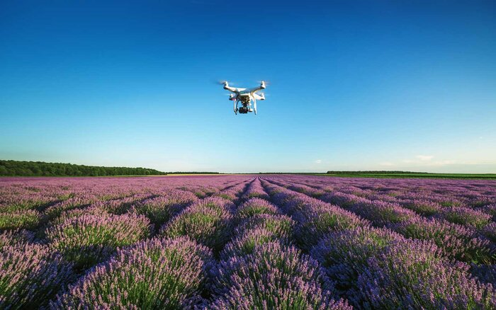 Apple Will Use Drones To Compete With Google Maps Travel Leisure - Google maps drone